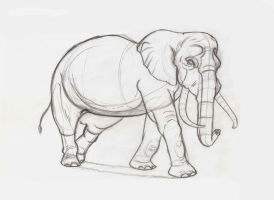 Elephant Study by anIntellexual