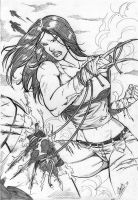 X-23 12 by Dannith