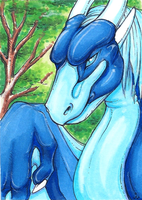 Samantha-dragon ACEO by Woodenbullet
