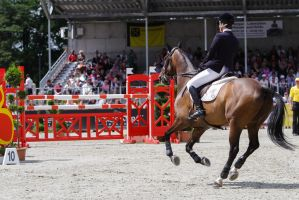 3DE Show Jumping Phase Stock 12 by LuDa-Stock