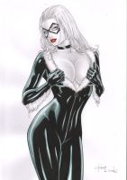 Black Cat - INK and COLOR - by Rubismar by Ed-Benes-Studio