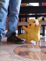 Pikachu Real life size by Olber-Correa