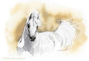 Arabian Horse I by AtelierArends