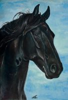 Friesian Horse Wiggele by Lmk-Arts