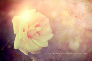 Happy Birthday by CindysArt
