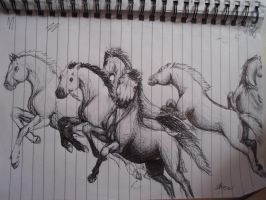 Pen Horses by brunonade