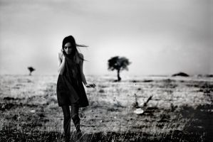 dmm 03 by metindemiralay