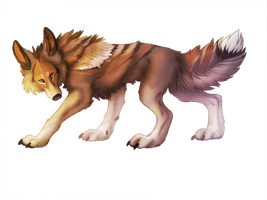 The Coywolf by InfinityCreature