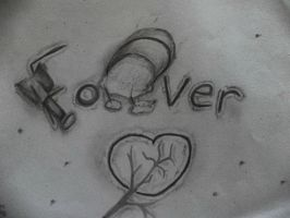 Forever is Over by KittyNinja2009