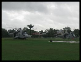 Navy Sea Kings unloading by RedtailFox