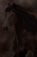 Friesian Portrait by RandomCatLady