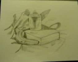 IB Art Still Life by darknessisbeforeus