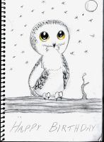 Cute Owl by rachelegranger
