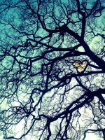 Love Between The Branches by EnduringEyeliner