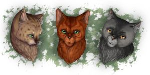 Warrior Cats - Headshots by Thilil