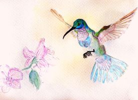Long legged colibri and some flowers by Syoms