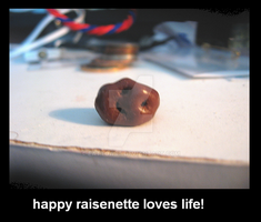 happy raisinette by EatToast