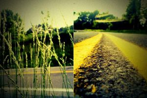 Diptych Three by ram-photography