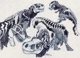 Bone Rex by FablePaint