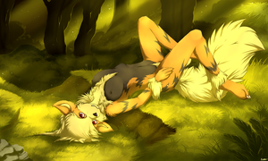 Wild Arcanine by Blackkaries