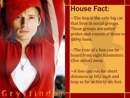 House Fact: Gryffindor by InfractiAngelus