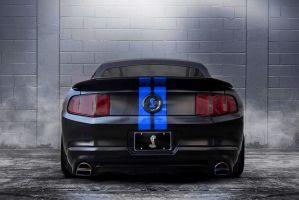 GT500 - Color 0ptions by lovelife81