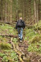 Dad in a norwegian forest by Spetsflickan