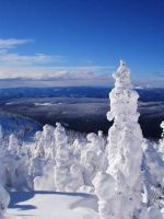 A Skier's Paradise by melcow