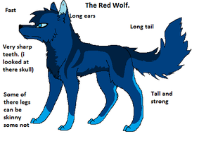 Red Wolf by Hyperactive-Blue