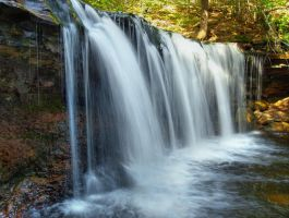 Ricketts Glen State Park 93 by Dracoart-Stock