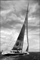 america's cup racing yacht by RaMiBru