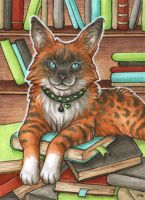 ACEO for Whitew3r3wolf by Dragarta