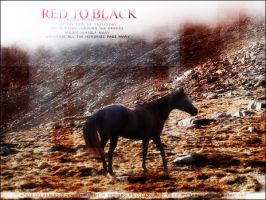 red to black by rhinebeck