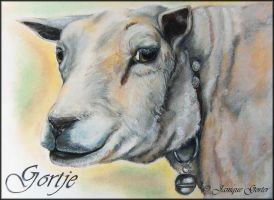 """Gortje"" the sheep by Jniq"