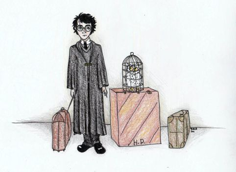Harry and Hedwig by Anoch