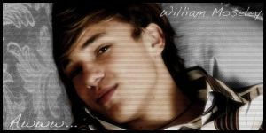William Moseley Banner by Philestino