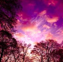Purple Clouds by Nathanaelle