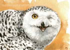 Winking Owl ACEO by Pannya