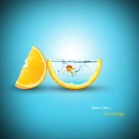 Save Life ... Eat Orange by Na2L