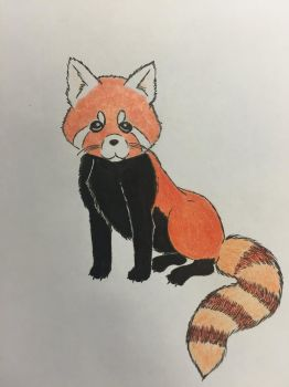 Red panda  by Beautiful-Darkside