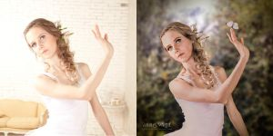 White Butterfly - Before / After by annewipf