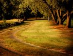 The Road by Ciuin