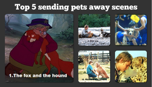 Top 5 sending pets away scene by kibaofthewolves