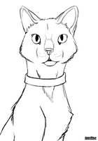 Cat Lineart Free by Ahiku-wolf