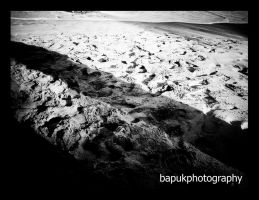 The Paths by Bapuk