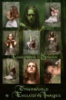 Exclusive: Otherworld Pack by lindowyn-stock
