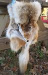 Roadkilled Coyote Fur Full Pelt Bandolier Bag by TarpanBeadworks