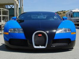 blue black Bugatti Veyron nose by Partywave