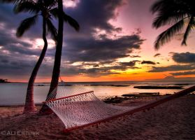 Hawaii, The hammock by alierturk