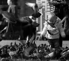 Playing With Pigeons by PrimalClone